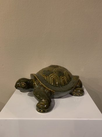 schildpad-groen